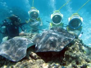 Marcher sous la mer en toute sécurité